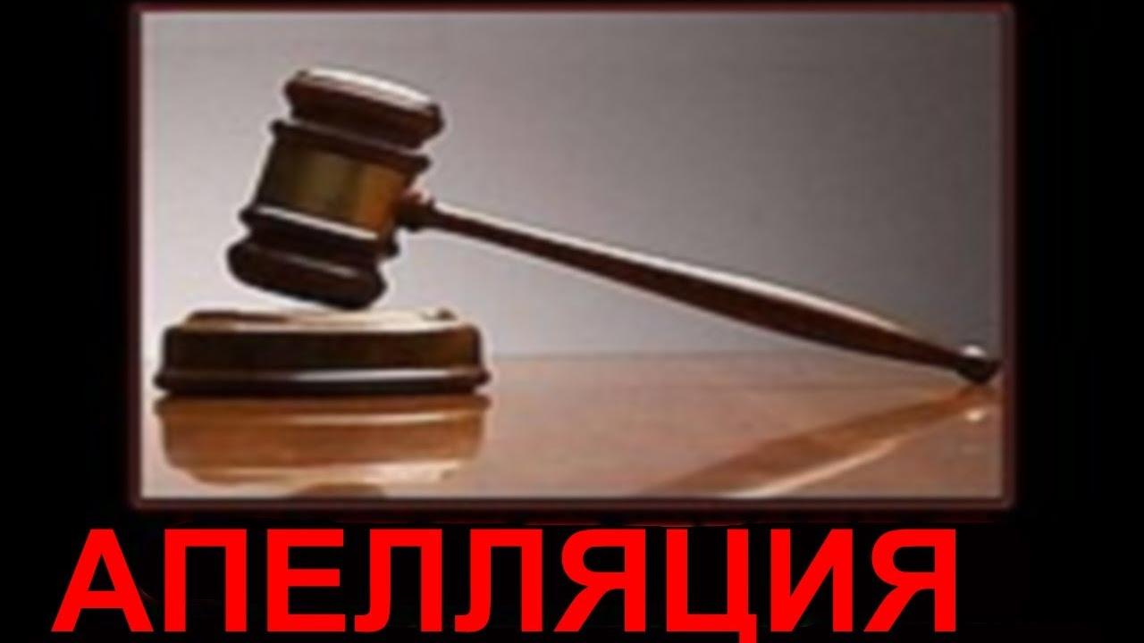 Срок подачи апелляции на решение суда