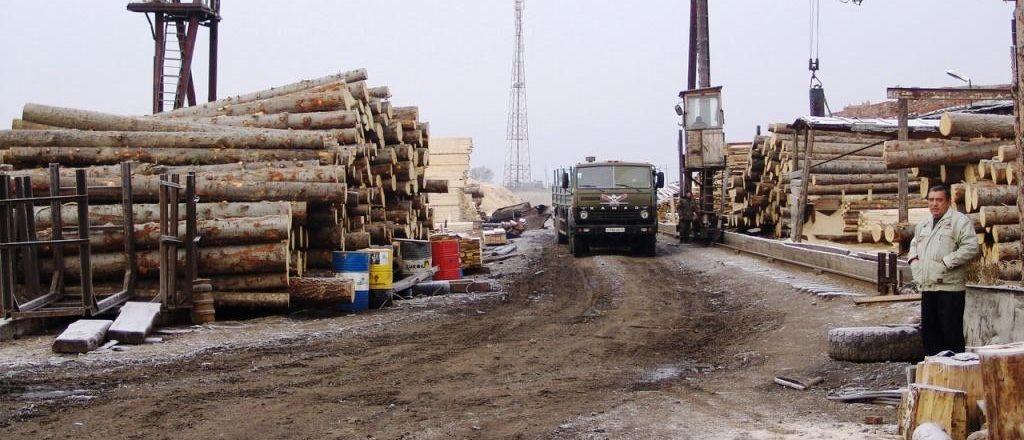 Дополнительные соглашения в договор аренды лесного участка подлежат государственной регистрации